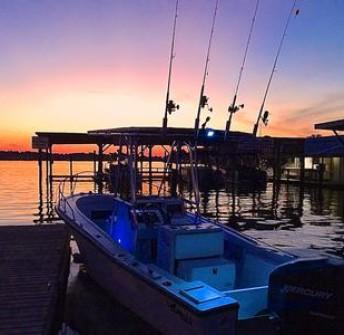 Florida Bowfishing – Central FL